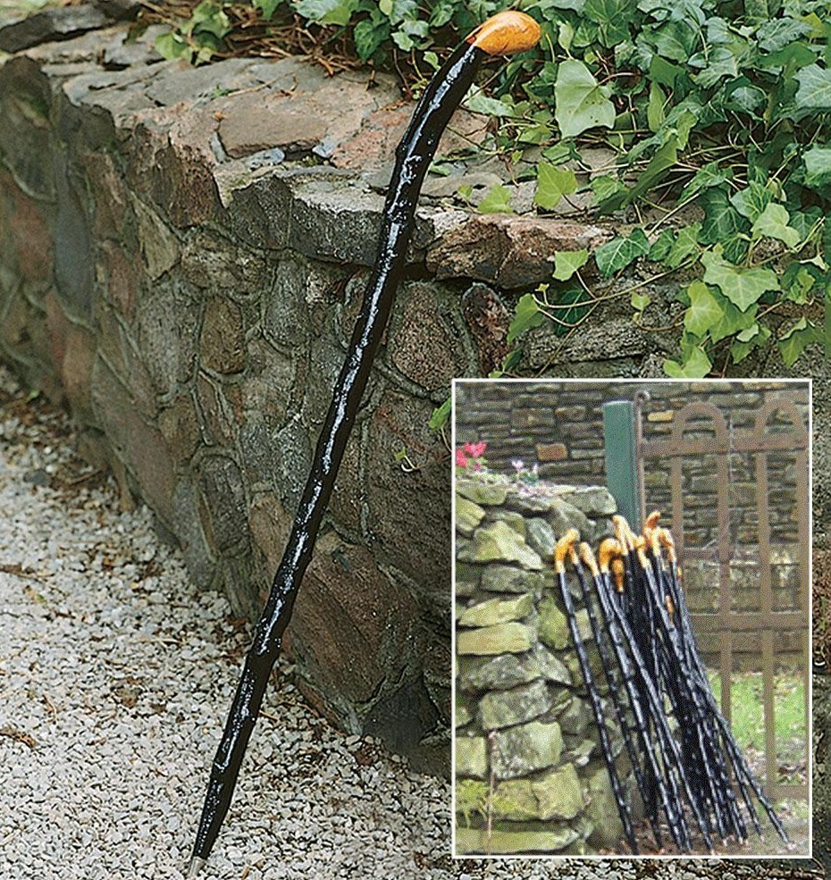 Irish Walking Stick - Blackthorn Cane